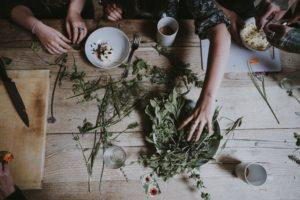 kräuter, natur, apotheke, draußen, haren